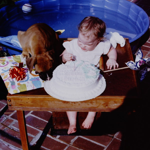 Puppy, Cake and Me